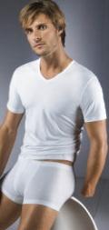 V Neck Shirt Dry Cotton