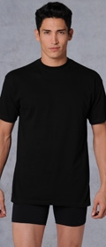 HOM HOM T-shirt Harro